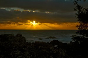 sunset_on_pacific_by_musingcalliope-d8cfckr