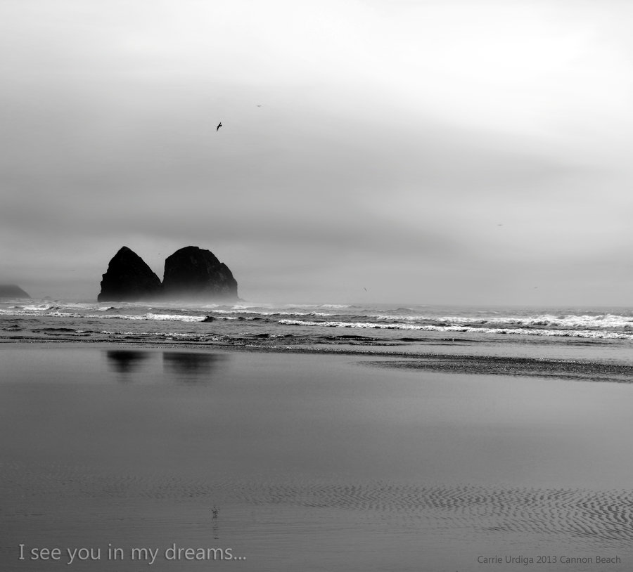 i_see_you_in_my_dreams____by_musingcalliope-d6hb8pz