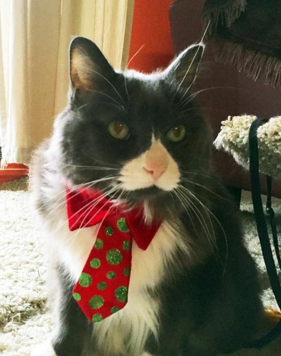 Zephyr Christmas tie